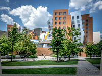 Stata Center, Cambridge MA